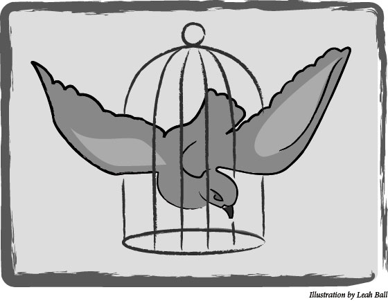 Caged Bird Illustration by Leah Ball