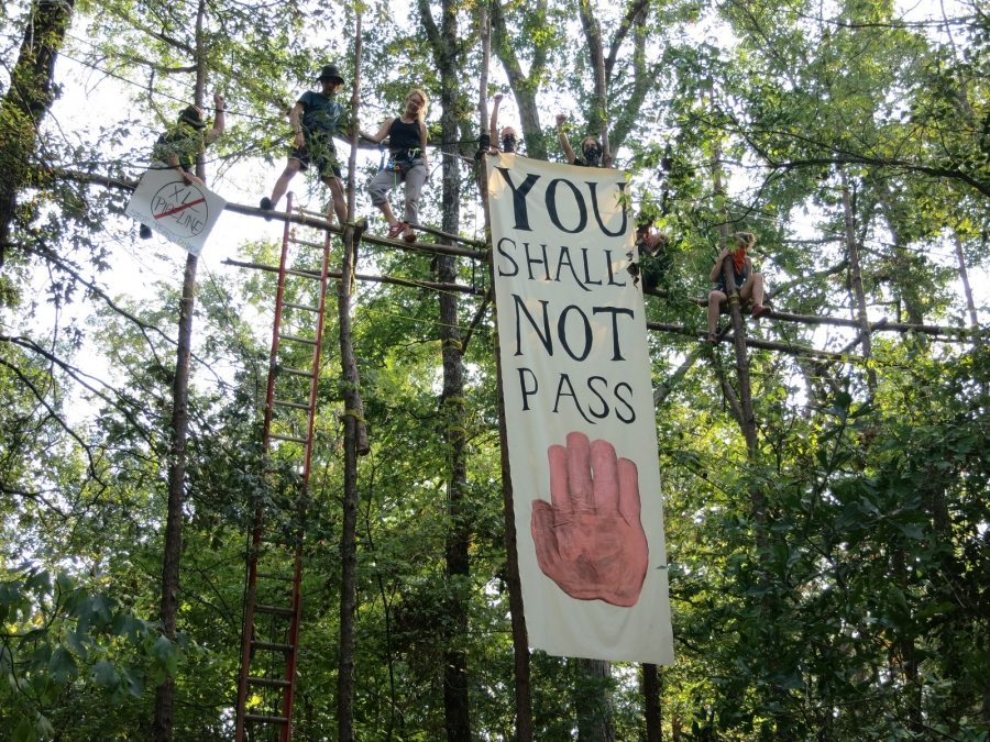 A protest tree sit in East Texas.