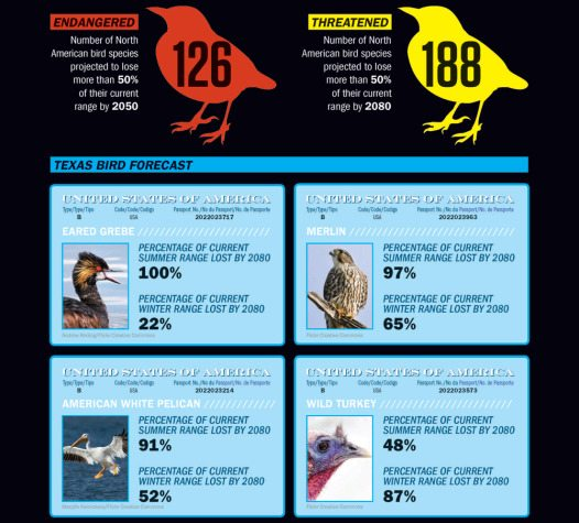Source: Audubon Birds and Climate Change Report, 2014