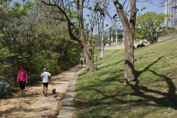 The stretch of Lady Bird Lake Hike & Bike Trail near the crime scene.