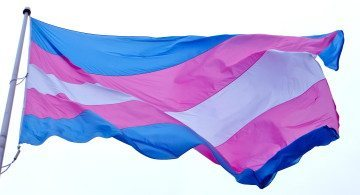 The blue and pink transgender pride and rights flag.