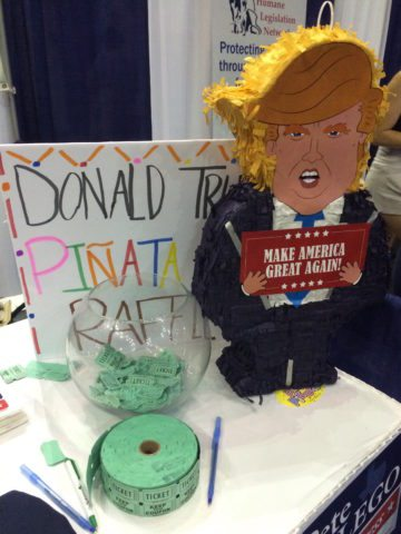 Raffle for a Donald Trump piñata at the Texas Democratic Convention.