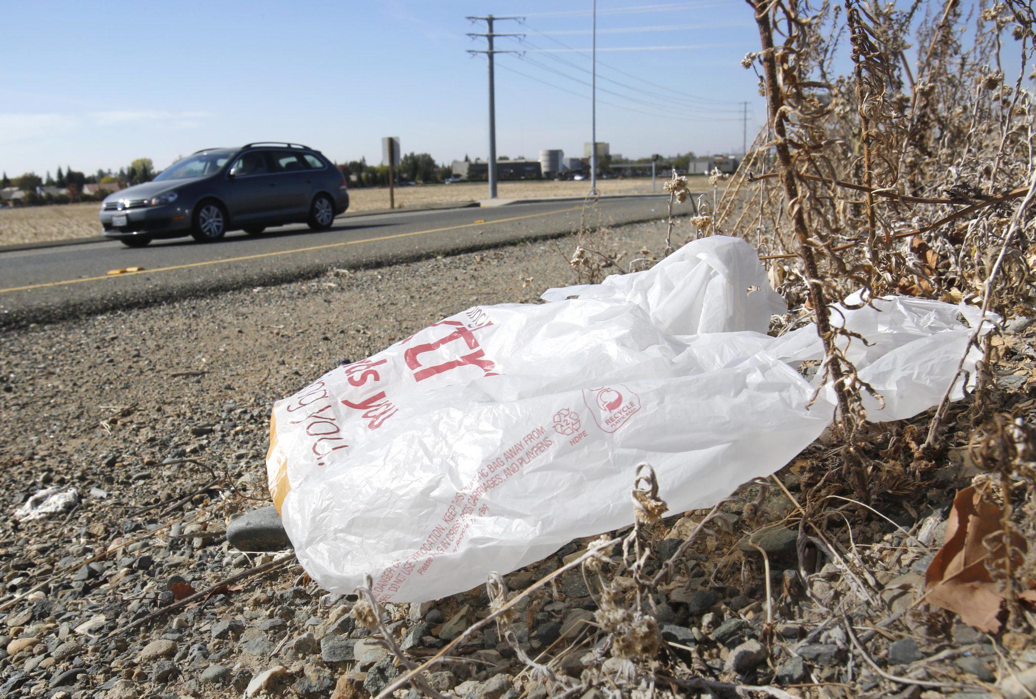 plastic, bag, ban