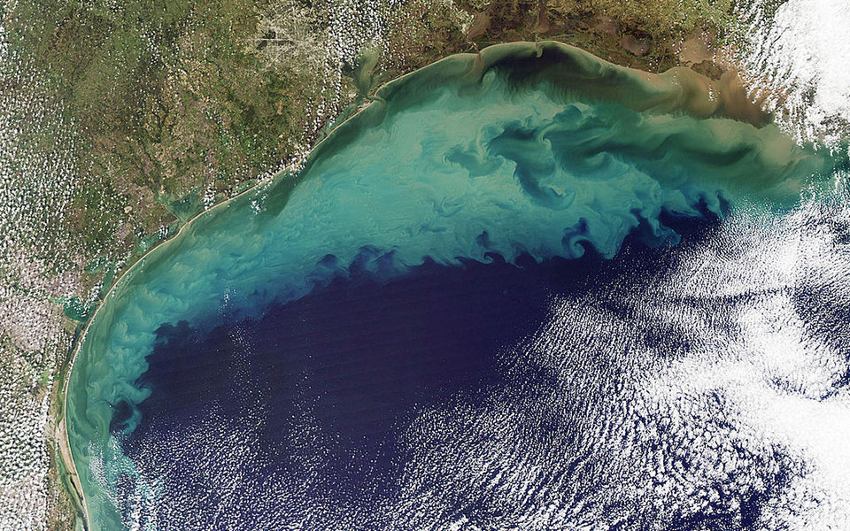 Sediments in the Gulf of Mexico that can cause algae blooms.