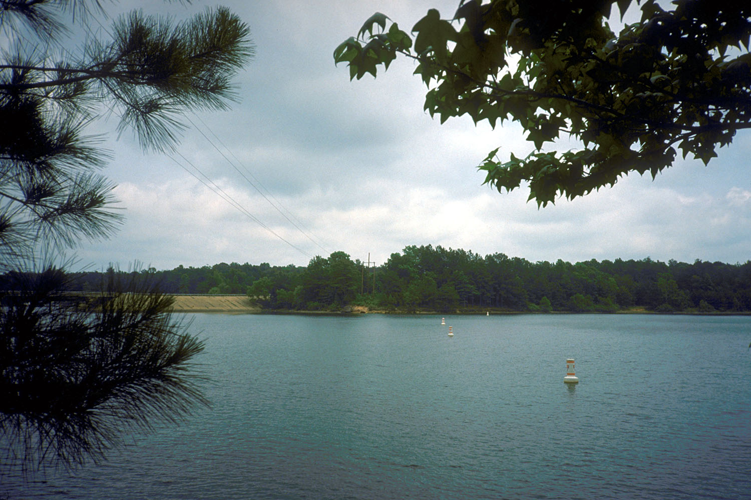 Lake O' the Pines in East Texas