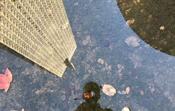 Zac Crain's reflection in a puddle in downtown Dallas.